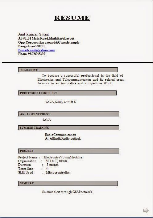 make resumes Sample Template Example of ExcellentCV / Resume - Cv Example