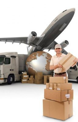 Dhl Low Cost International Courier Services In India Usa Canada Dhl Courier Services Courier To Usa Delhi Canadauntitled Part International Courier Services Logistics Transportation