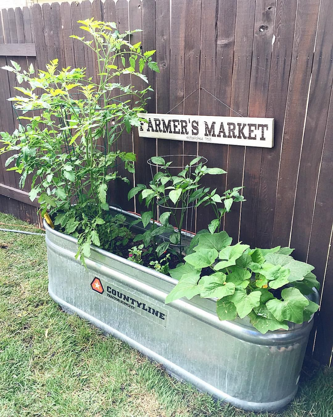 We Love Using A Water Trough As A Planter Box From Tractor Supply Co Plants From Lowe S Farmer S Market Sign Made From Vinyl S Plants Planter Boxes Planters
