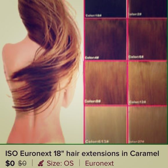 Iso Euronext Hair Extension 14 16 Iso This Hair Extensions But