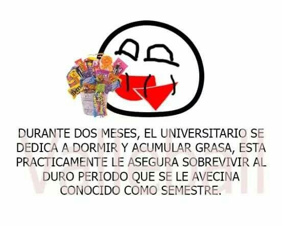 Frases Graciosas Universitarios Universitarios Frases Y