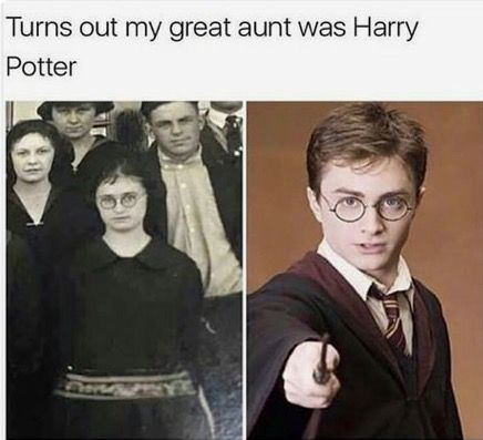 Pin By Turtle On Harry Potter Harry Potter Memes Hilarious Harry Potter Jokes Harry Potter Puns