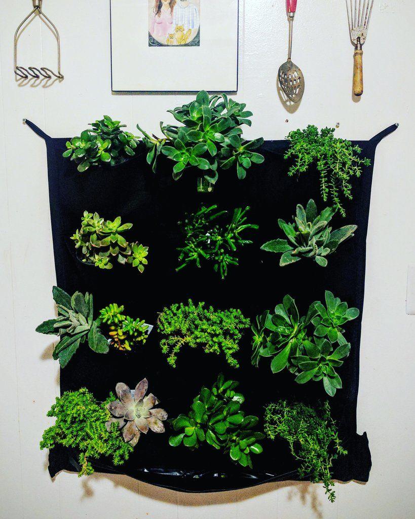 12 pocket indoor waterproof vertical living wall planter on indoor herb garden diy wall vertical planter id=49264