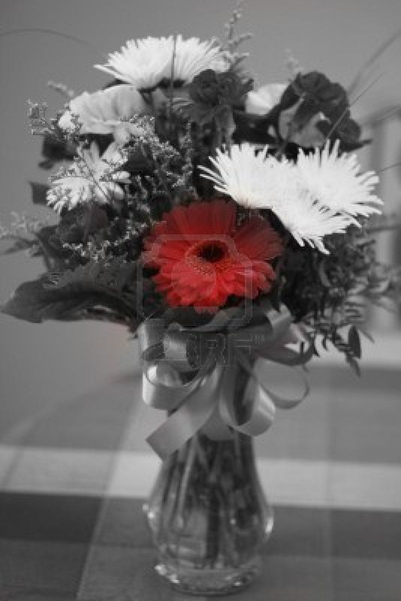 black white and red photography - Bing Images | Red, black and white ...