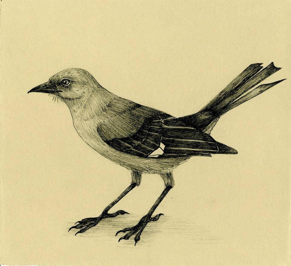 Mockingbird Ink Drawing Print 1500 Via Etsy Tattoo Idea