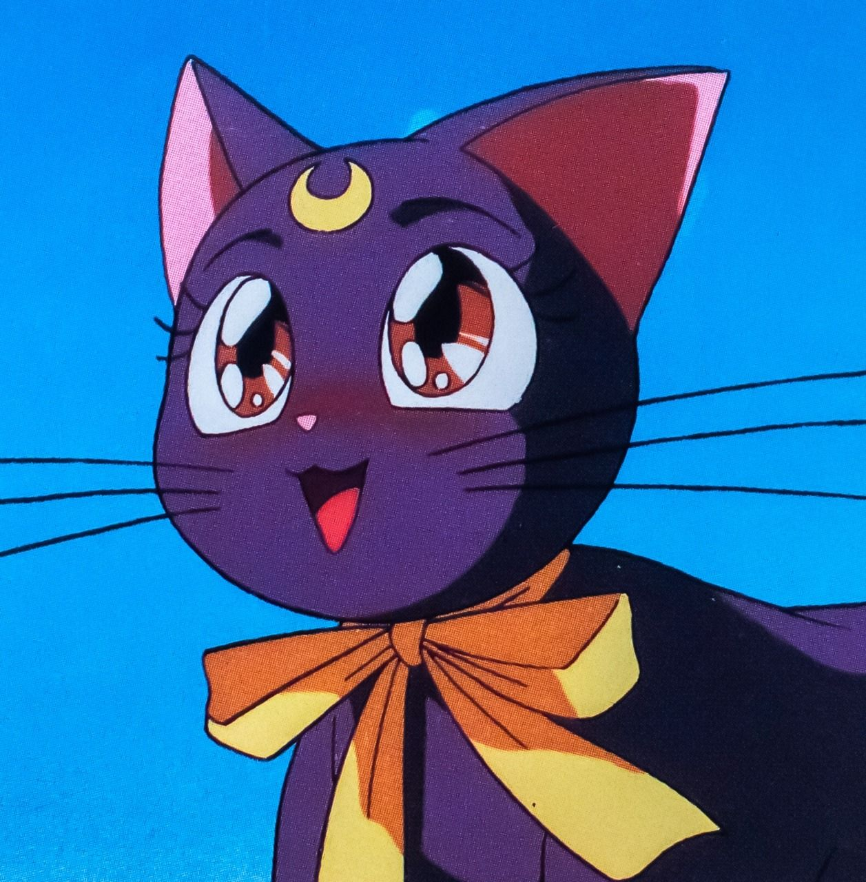 A Blog For All Things Sailor Moon Except Shingo Sailor Moon Cat Sailor Moon Wallpaper Aesthetic Anime