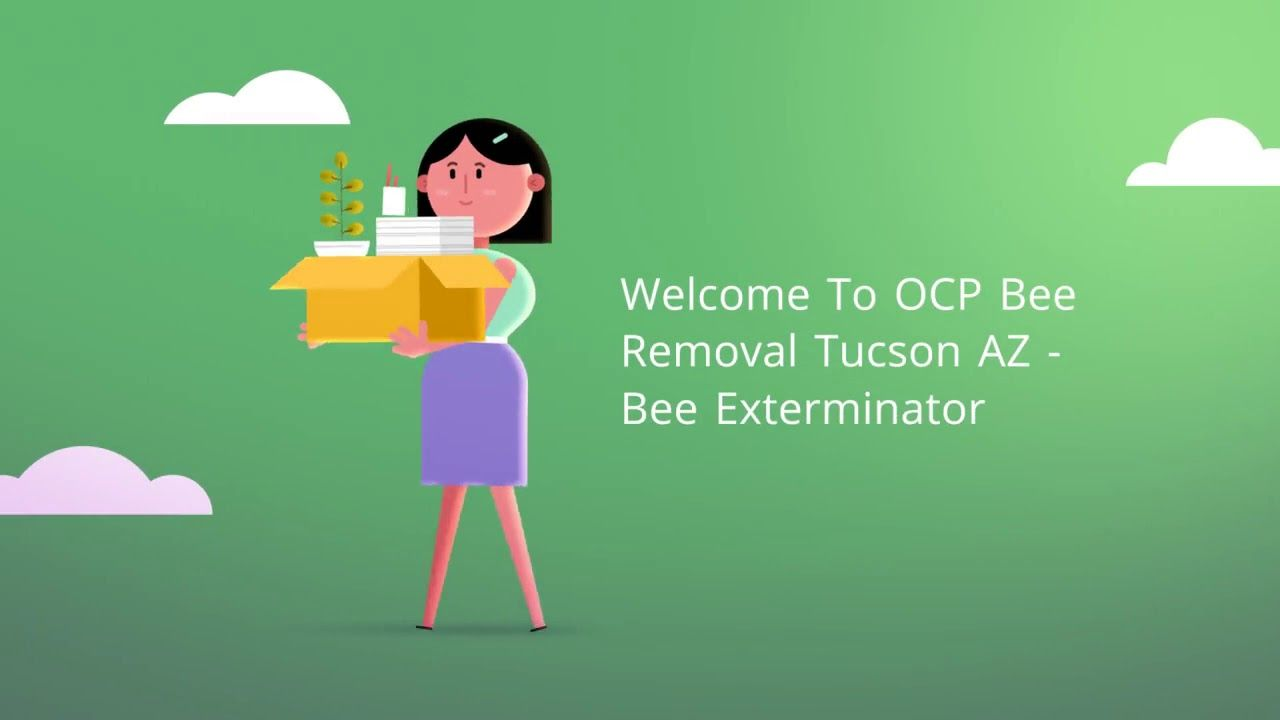 Ocp Bee Removal Tucson Az Bee Exterminator Is Totally Committed