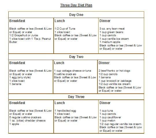 cleveland clinic 3 day diet menu