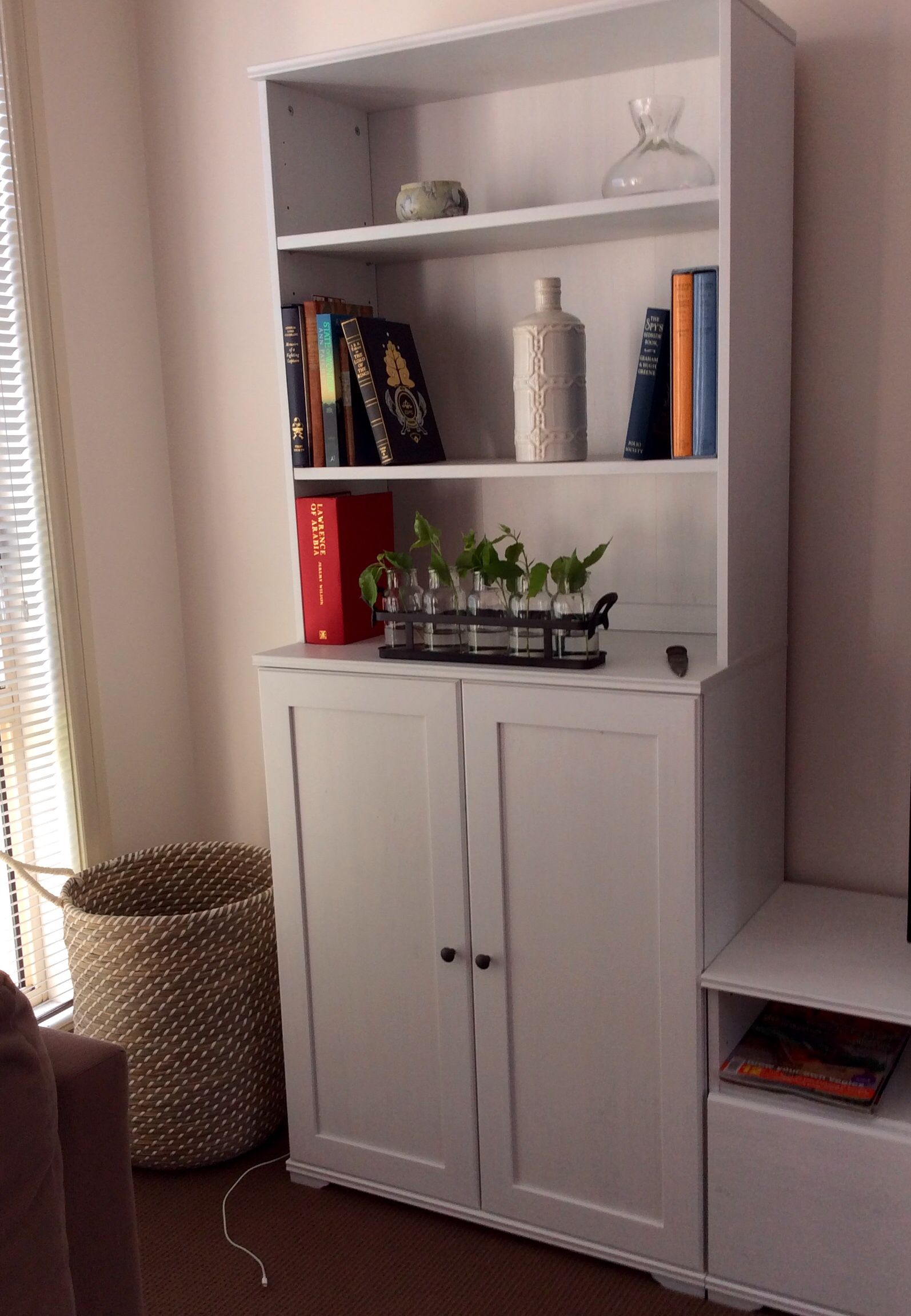 Borgsjo Bookcases From IKEA