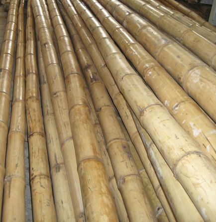 Need cheap bamboo poles | Color- Ivory and Beige | Bamboo