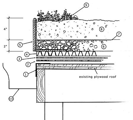 Green Roof Page Cross Section Shed Pinterest Metal
