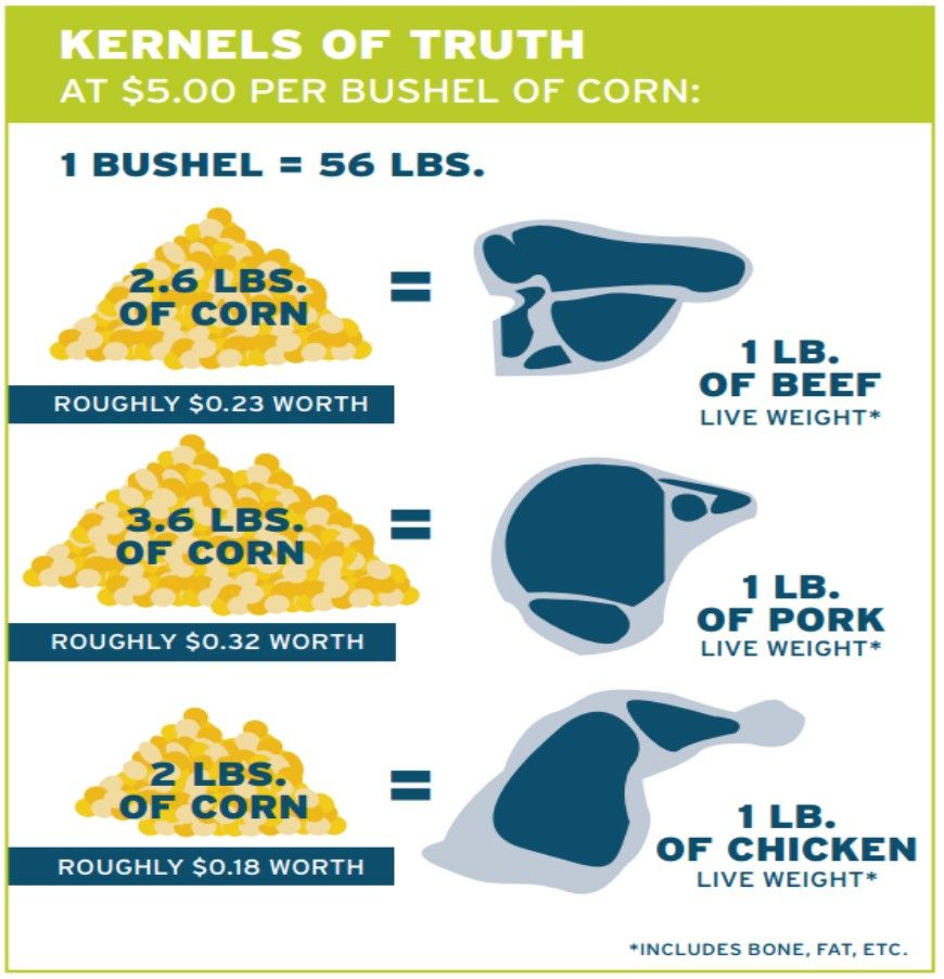 HOW MUCH CORN IS IN A POUND OF … | Corn, Beef liver, Grocery