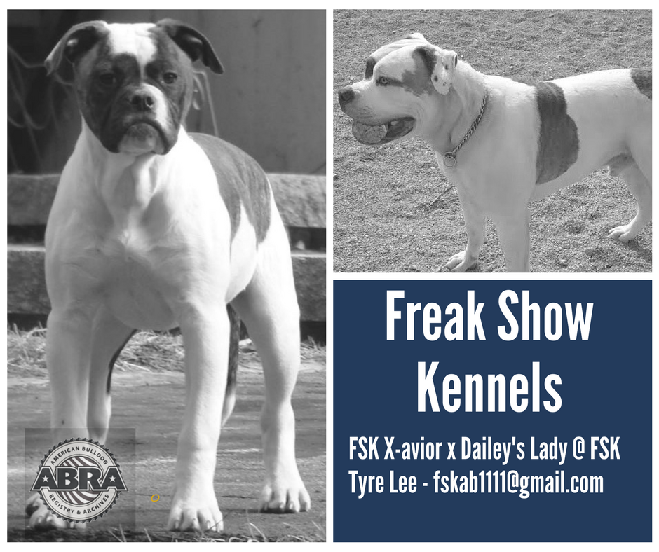 Pin on Freak Show Kennel