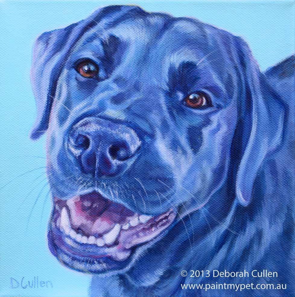 Cindy Labrador X Dog Portrait Pet Portrait Paintings Dogs Dog Sketch