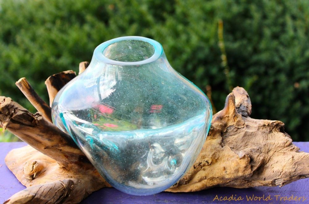 Rustic hand blown glass terrarium fish bowl vase driftwood for Restaurants with fish bowl drinks near me