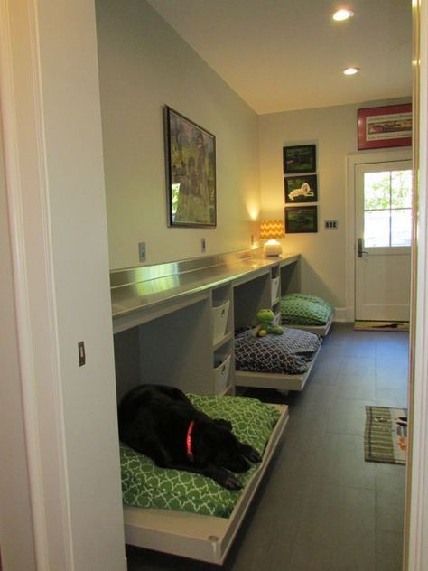 Example Of A Trendy Galley Utility Room Design In Other With Flat Panel Cabinets Medium Tone Wood Cabinets Stainless Steel Counter Dog Rooms Dog Bedroom Home