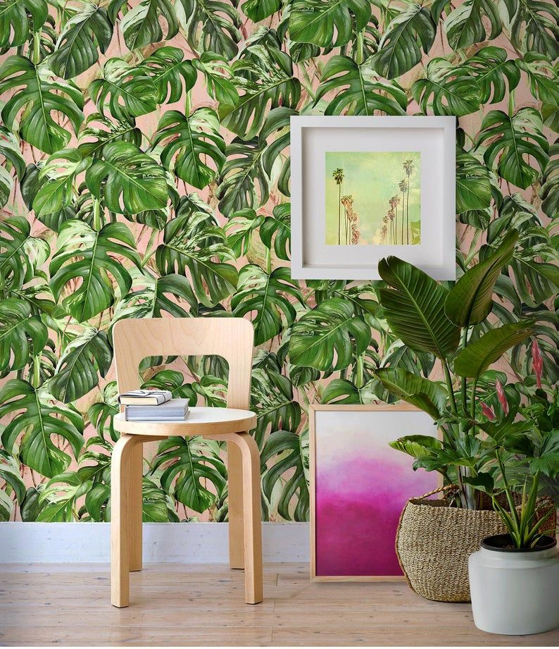 Monstera Jungle Removable Wallpaper Peach Jungle Wall Paper With Monstera Leaves Peel Stick Palm Leaf Wallpaper Leaf Wallpaper Jungle Wall Decor