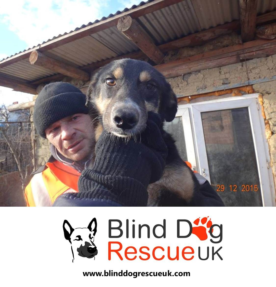 Blink is one of our urgent cases currently in the public