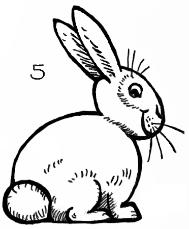 How to draw bunnies with easy bunny rabbits drawing lesson how to draw step by