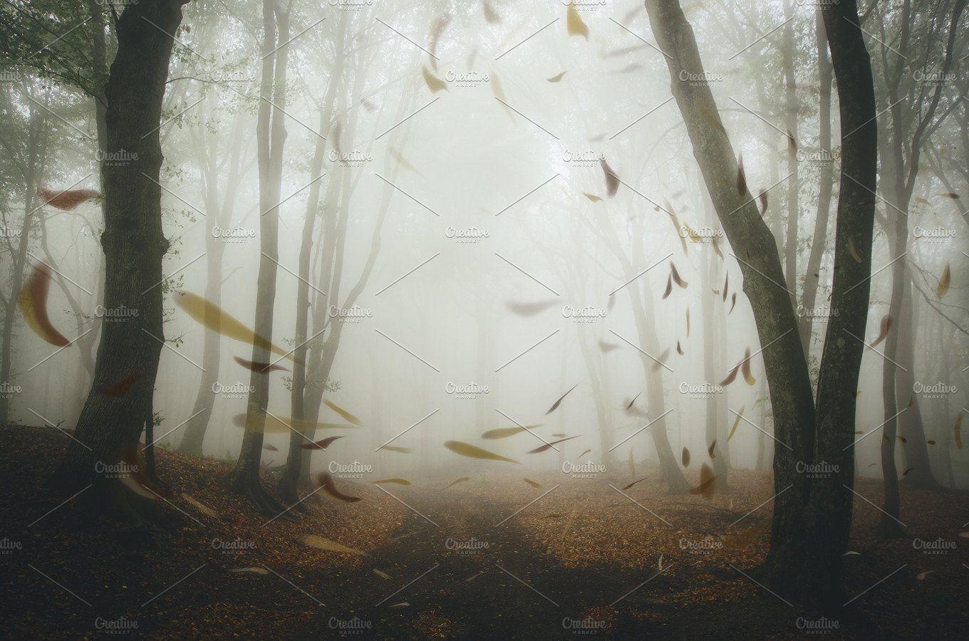 Autumn leaves falling in forest , #SPONSORED, #high#fog#resolution#photo #Ad #autumnleavesfalling Autumn leaves falling in forest , #SPONSORED, #high#fog#resolution#photo #Ad #autumnleavesfalling Autumn leaves falling in forest , #SPONSORED, #high#fog#resolution#photo #Ad #autumnleavesfalling Autumn leaves falling in forest , #SPONSORED, #high#fog#resolution#photo #Ad #autumnleavesfalling Autumn leaves falling in forest , #SPONSORED, #high#fog#resolution#photo #Ad #autumnleavesfalling Autumn lea #autumnleavesfalling