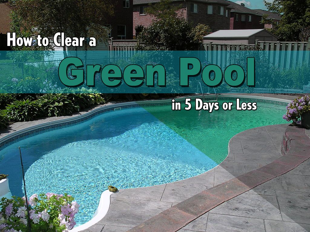 How To Clear A Green Pool In 5 Days Or Less Pool Care Swimming Pools And Pool Maintenance