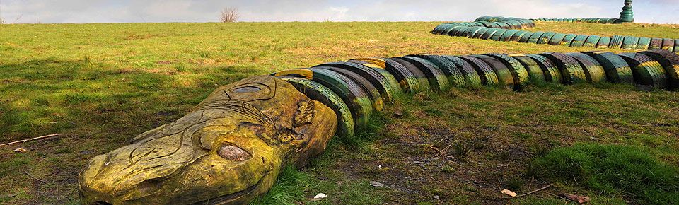 Mynydd Mawr Country Park Sculpture, Woodland park