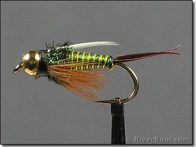 1000+ images about nymphs on pinterest | prince, trout and fly tying, Fly Fishing Bait