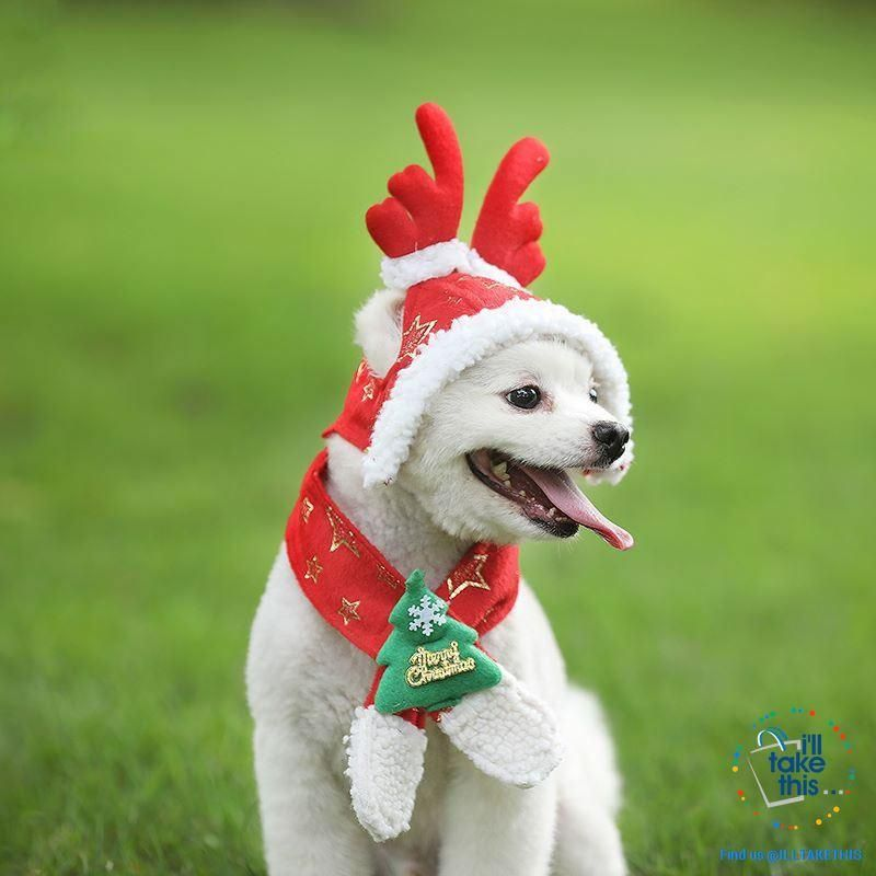 Pet Lovers Our Dog Cat Santa Birthday Cap Scarf Antler And
