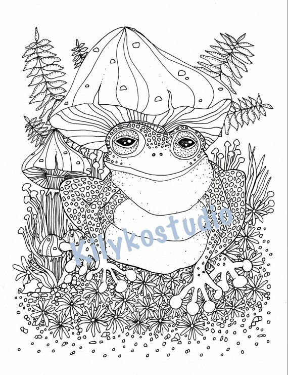 frog toad and mushrooms forest floor adult coloring page