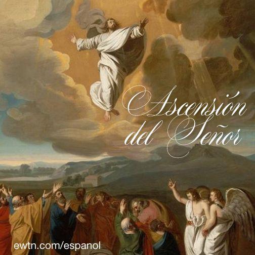 La Iglesia celebra el dia en que el Señor Jesús fue llevado al cielo y está sentado a la derecha de Dios. Marcos 16, 19