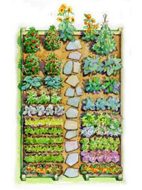 easy childrens vegetable garden plan
