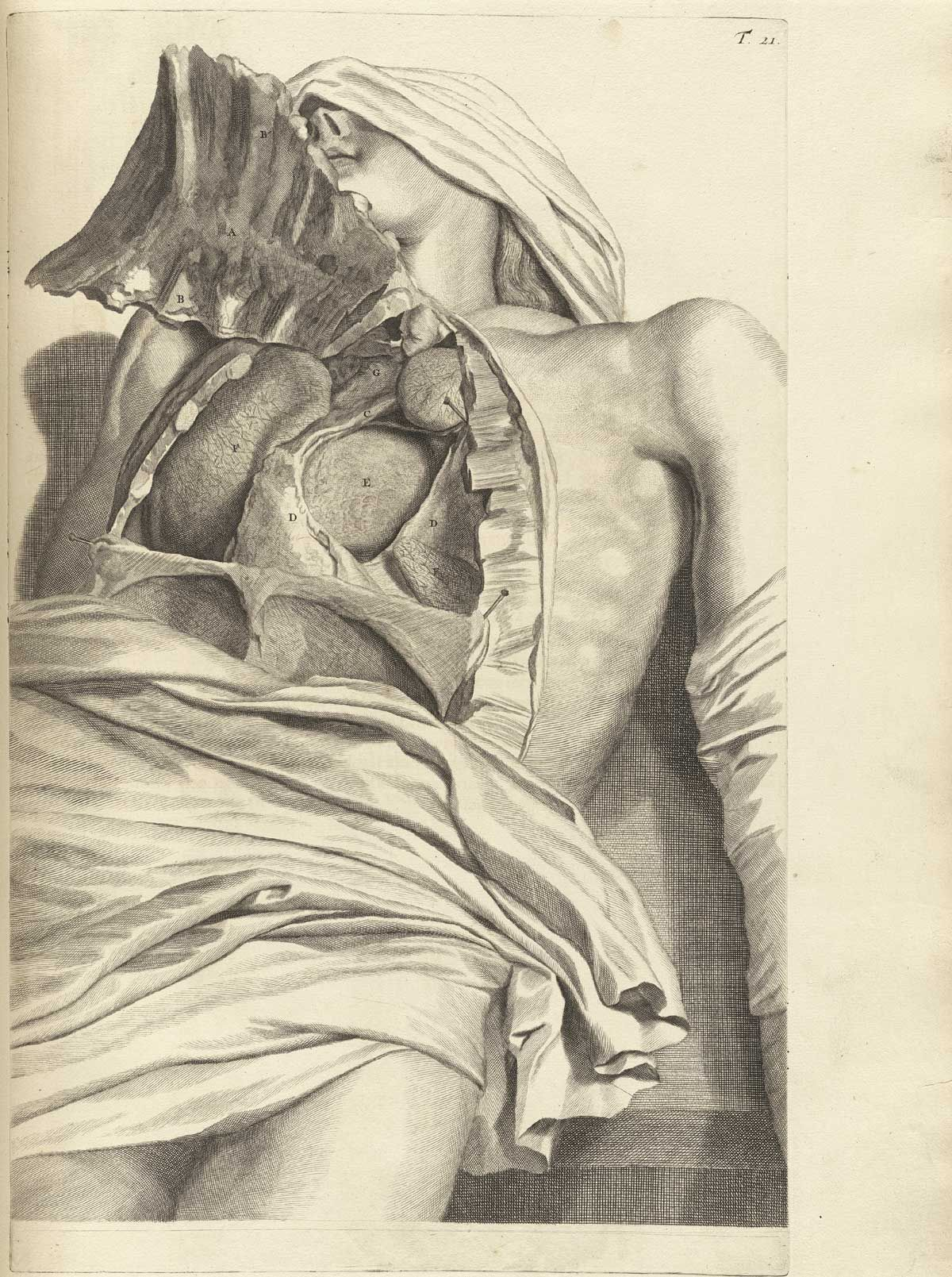 Govard Bidloo: Anatomia humani corporis | CORPUSS | Pinterest ...