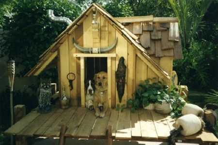 1000+ images about pet animal houses fences doors on pinterest