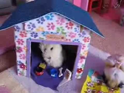 ▷ how to make an american girl dog house - youtube | girl dolls