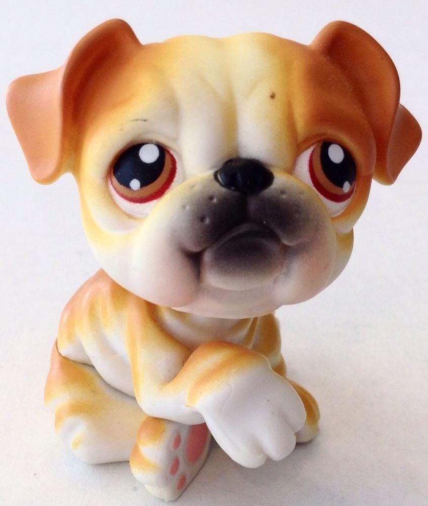 Littlest Pet Shop Lps Bulldog 46 Puppy Dog Hasbro Littlest Pet