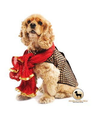 Doggie Sherwani S Personalised And Made To Order With Images Dog Clothes Buy Pets Online Pet Supplies