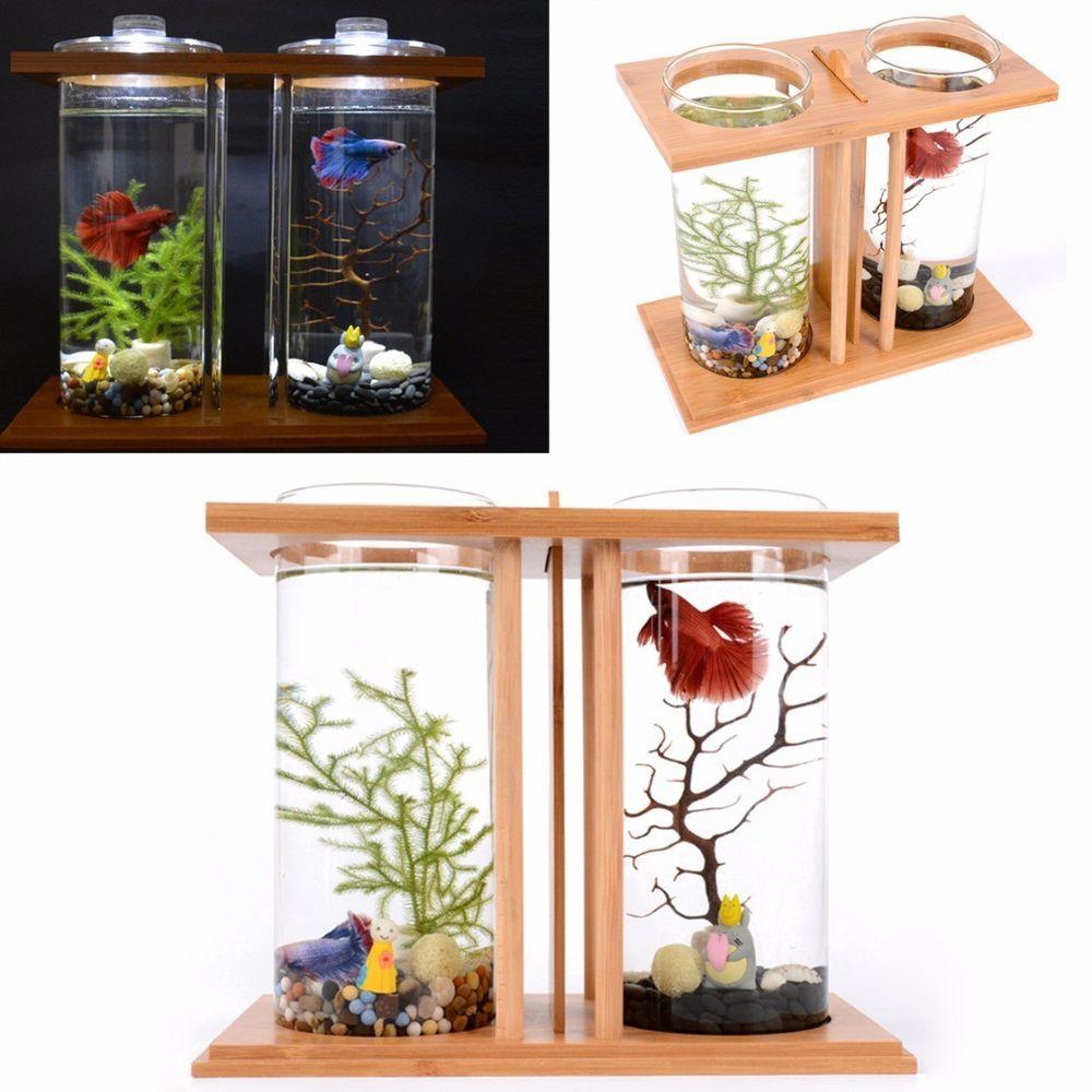 Led Light Dual Clear Glass Fish Tank Betta Aquarium Bamboo Shelf Home Office Latest Fish Tank Fish Tank For Sales Fishtank Fish Hidroponik Ikan Cupang Ikan
