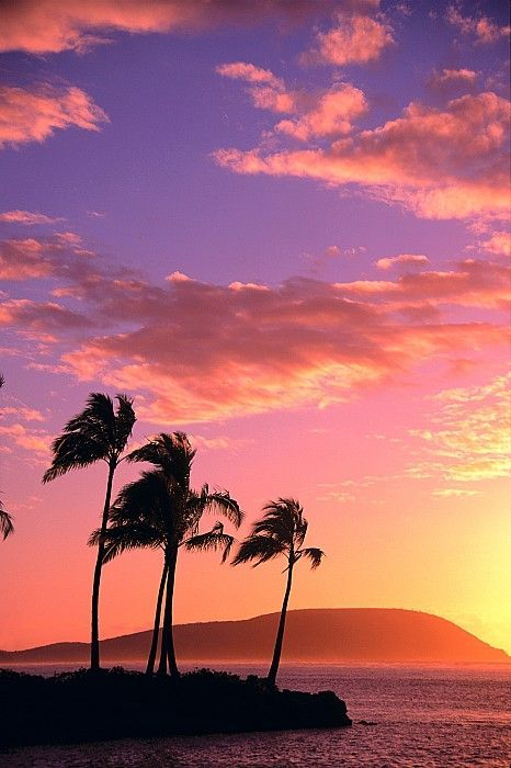 Tropical Sunrise Hawaii