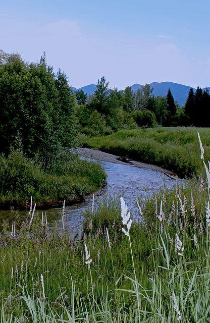 Haskill Creek, Flathead Valley, MT