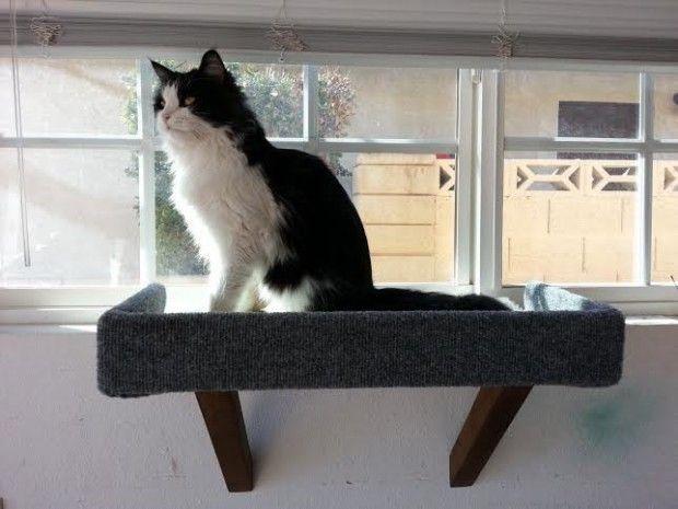 17 Creative Handmade Pet Home Ideas Designer Cat Beds Handmade Pet Pet Furniture