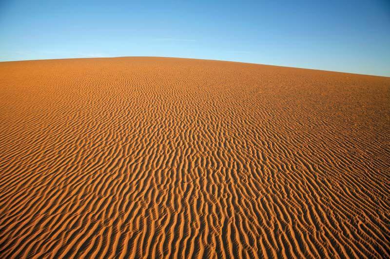 deserto sahara - Pesquisa Google