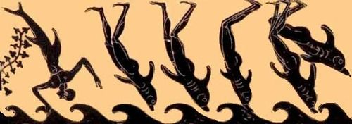 Image result for pictures of dolphins from etruscan