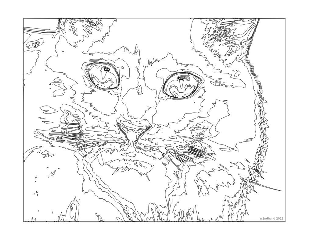 cat coloring pages for teenagers difficult color by number per a