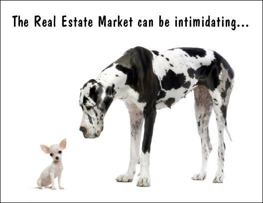 The Real Estate Market Can Be Intimidating Let Us Guide You