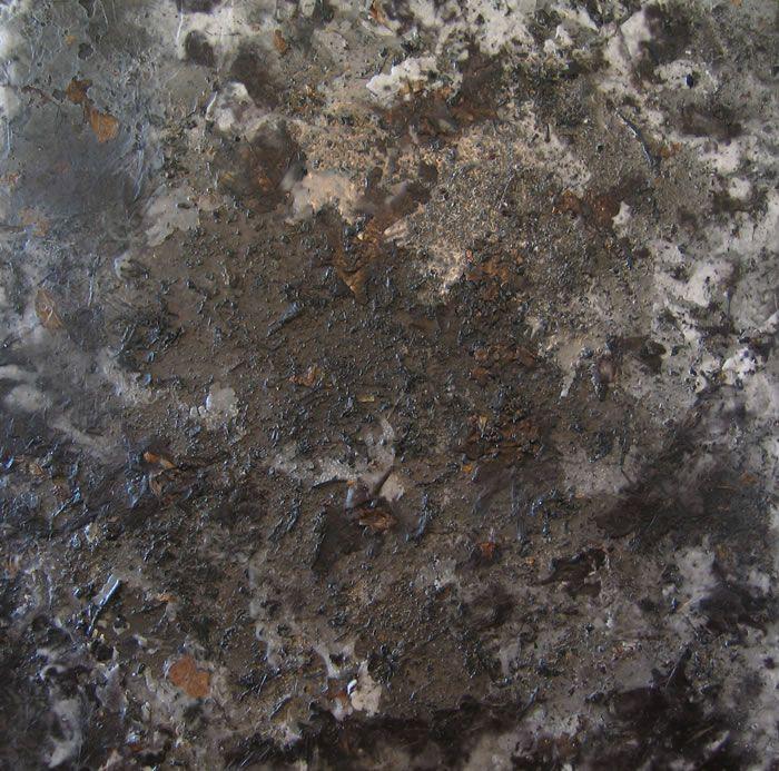"""Burning Earth of California"" Green Art - Alan Sonfist"