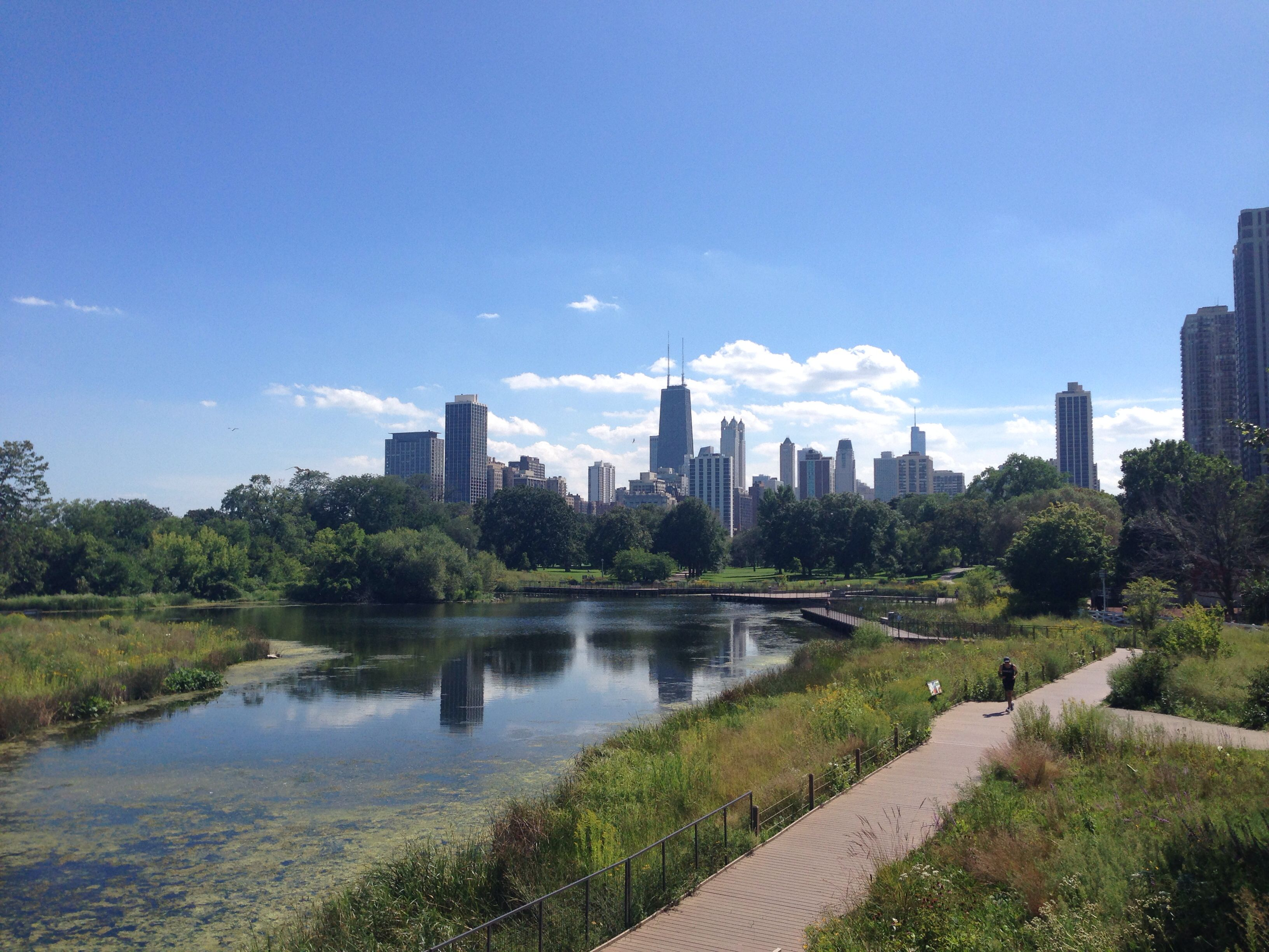 Chicago skyline from Lincoln park CD