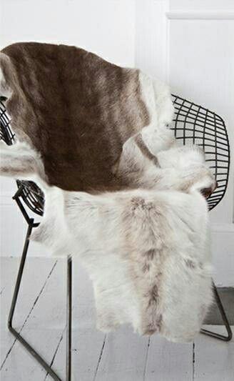 Animal Skin Chair Covers Mima High Australia Do Jiaq Win The Soft Natural Contrast Against Black Geometric Rh Pinterest Com Card Holder