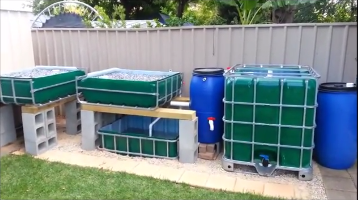 awesome aquaponics setup from http bestaquaponicssystem com
