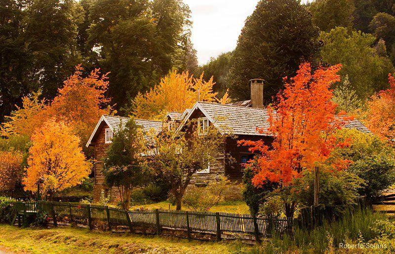 Otoño en Patagonia