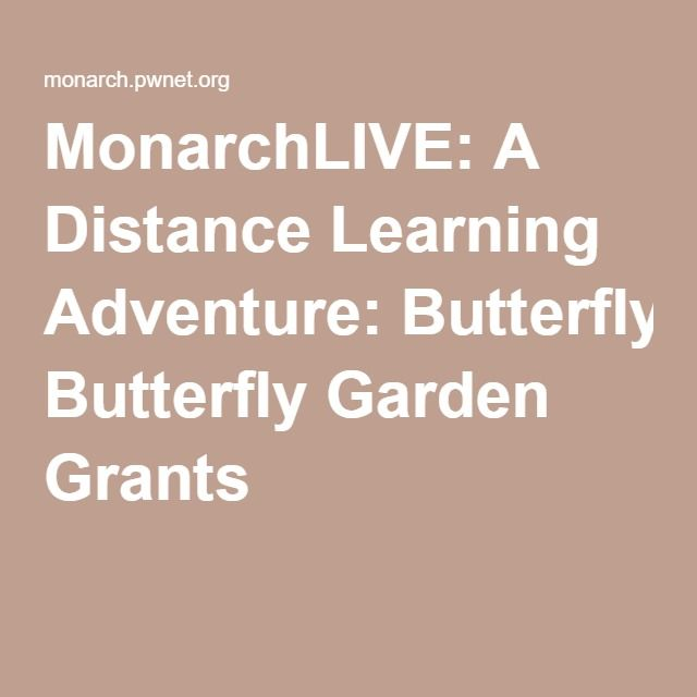 MonarchLIVE: A Distance Learning Adventure: Butterfly Garden Grants